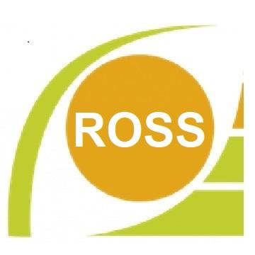 Réseau d'observation sociale et sanitaire de Bourgogne-Franche-Comté (ROSS)